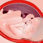 Zwangerschap week 40